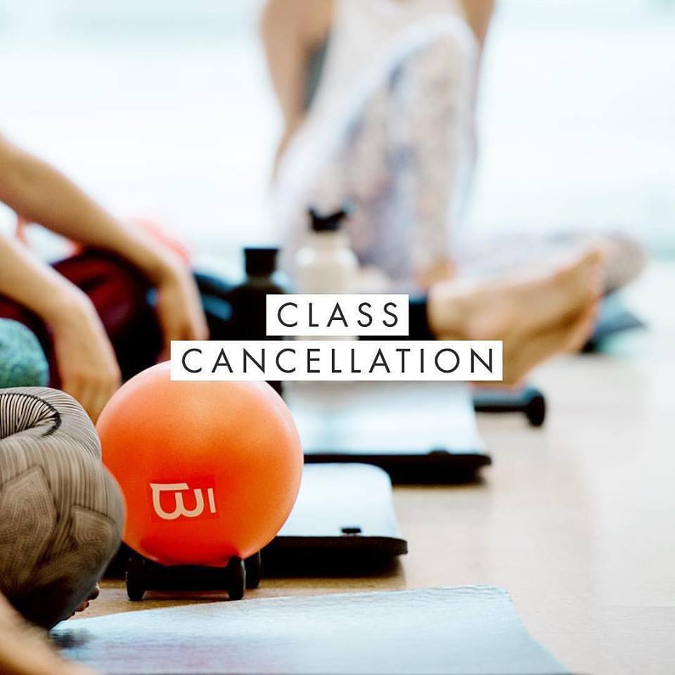 barre3 Physical Fitness Pilates Doylestown Image