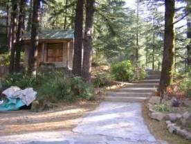 Vipassana Meditation Centre Dhamma Sikhara Dharamsala Dharamshala