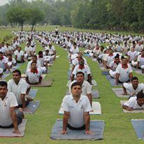 Ayurveda Yoga Ashram Amritsar