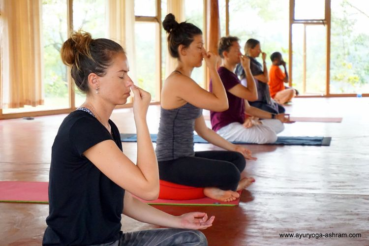 200 hrs Yoga Teacher Training Mysore, 300 hrs Yoga Teacher Training Mysore, Ayurveda Retreat, Ayurveda Treatment Centre, Yoga Retreats Mysore,  Mysore