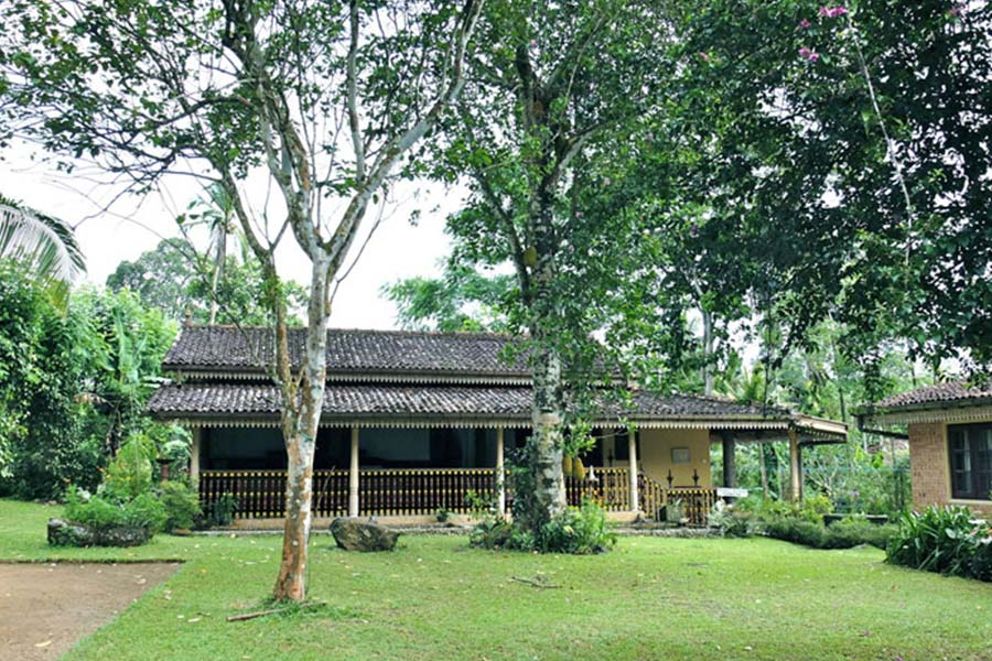 plantation villa retreat ayurvedic nature retreat in kalutara sri lanka000161540896111.jpg