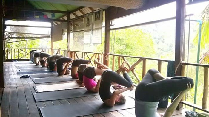 7 day detox & yoga retreat at the yoga retreat koh phangan000051521378856.jpeg