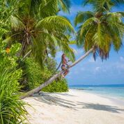 7 nights and 8 days yoga & diving holiday at island spa retreat maalhos, maldives421525950906.jpg