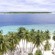 7 nights and 8 days yoga & diving holiday at island spa retreat maalhos, maldives631525950901.jpg