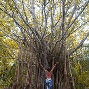 7 nights and 8 days yoga & diving holiday at island spa retreat maalhos, maldives771525950898.jpg