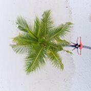7 nights and 8 days yoga & diving holiday at island spa retreat maalhos, maldives911525950895.jpg