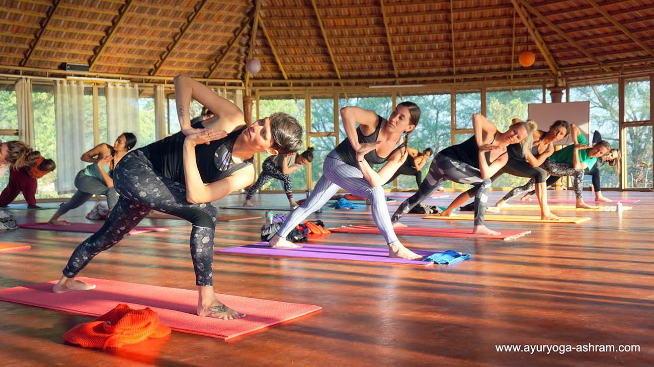 14 days yoga immersion retreat for beginners at ayuryoga yoga & ayurveda retreat mysore india0001115301798811534972955.jpg