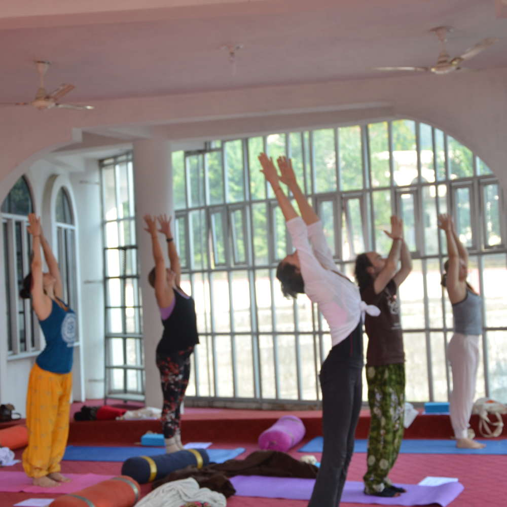 vedansha institute of vedic science rishikesh, india (48)1543059353.jpg