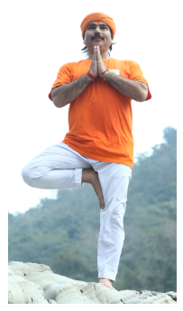 vedansha institute of vedic science rishikesh, india (5)1543059448.png