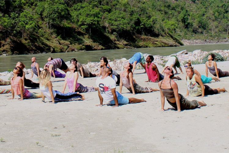 300 hrs yoga teacher training rishikesh, india141580115793.jpg