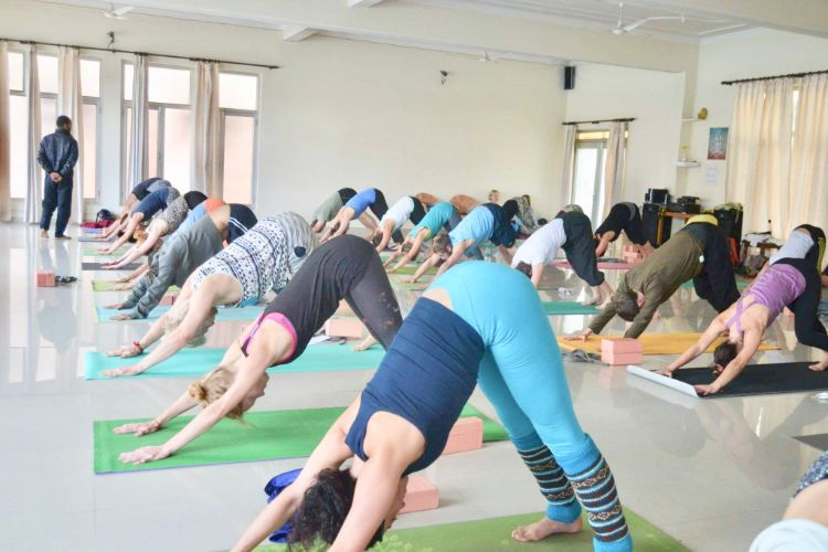 300 hrs yoga teacher training rishikesh, india451580115798.jpg