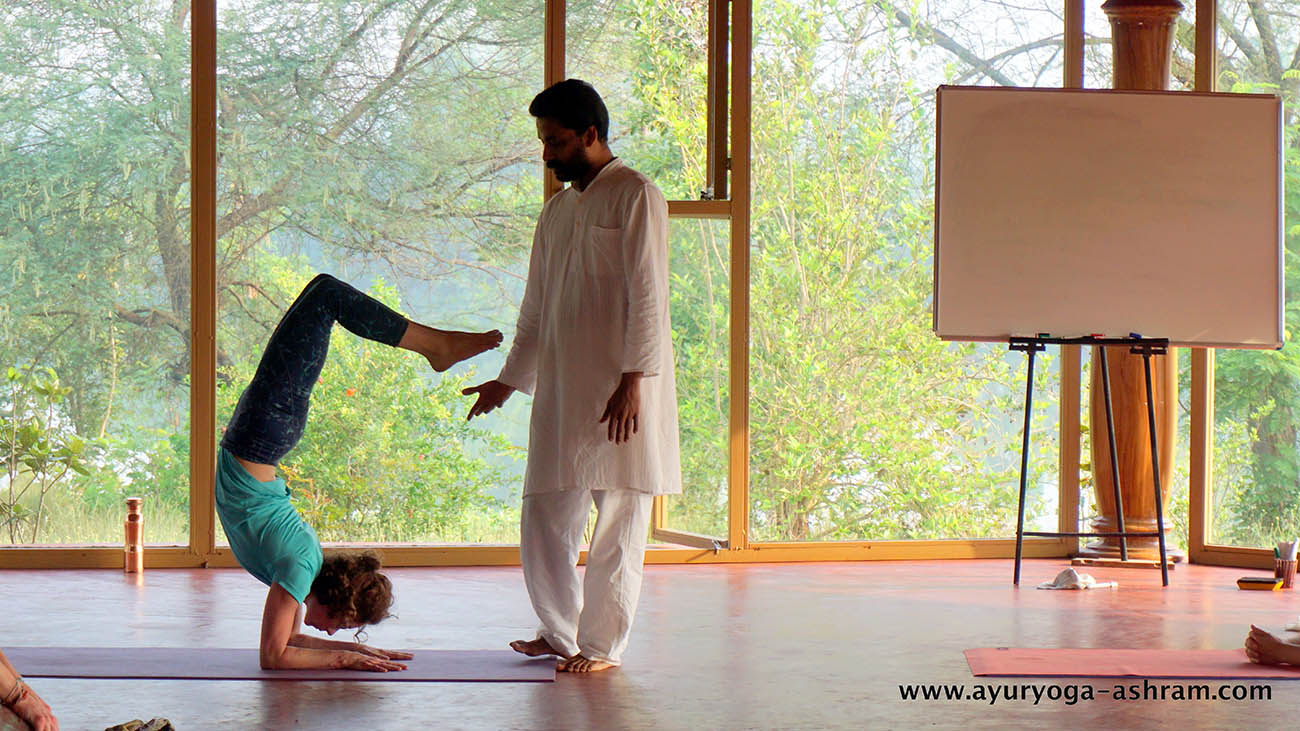 14 days yoga immersion retreat for beginners at ayuryoga yoga & ayurveda retreat mysore india0000915301798801534972953.jpg